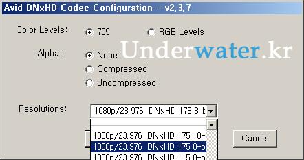 DNxHD02.jpg