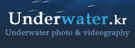 Underwater.kr - Underwater photo and videography Community